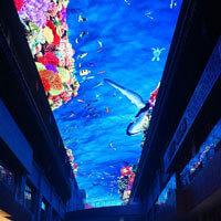 室内外LED天幕制作产品图片