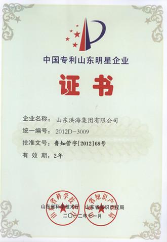中国专利山东明星企业称号