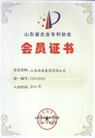 山东省企业专利协会会员